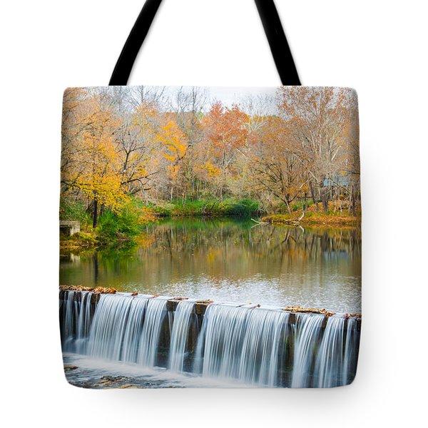 Helena Beauty Tote Bag