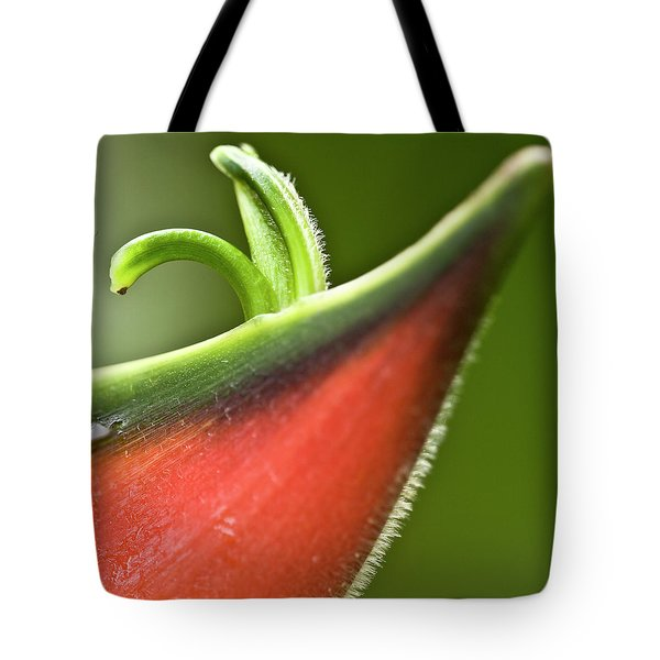 Heliconia Orthotricha Tote Bag by Heiko Koehrer-Wagner