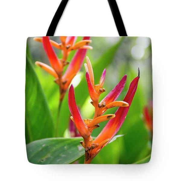 Heliconia Psittacorum Tote Bag