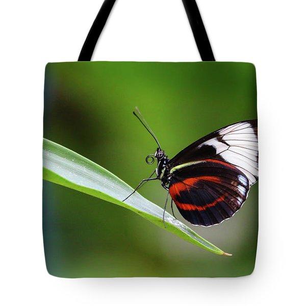 Heliconius Tote Bag