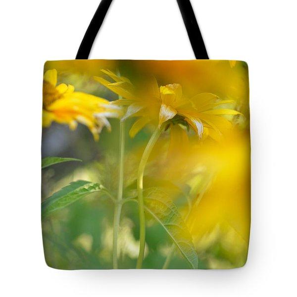 Heliopsis Blur Tote Bag by Janet Rockburn