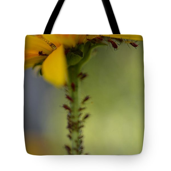 Heliopsis Infested Tote Bag