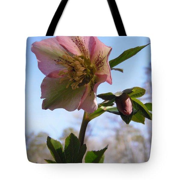 Hellebore Morning Tote Bag