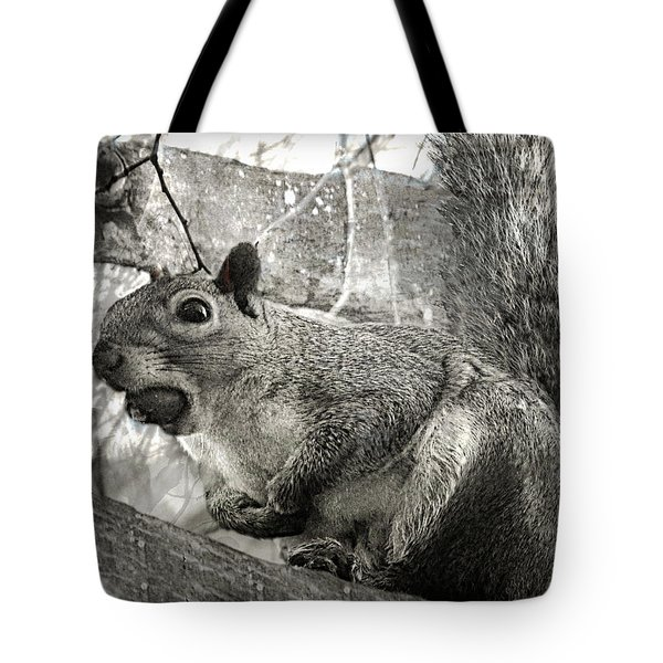 Tote Bag featuring the photograph Pesky Squirrel by Fine Art By Andrew David
