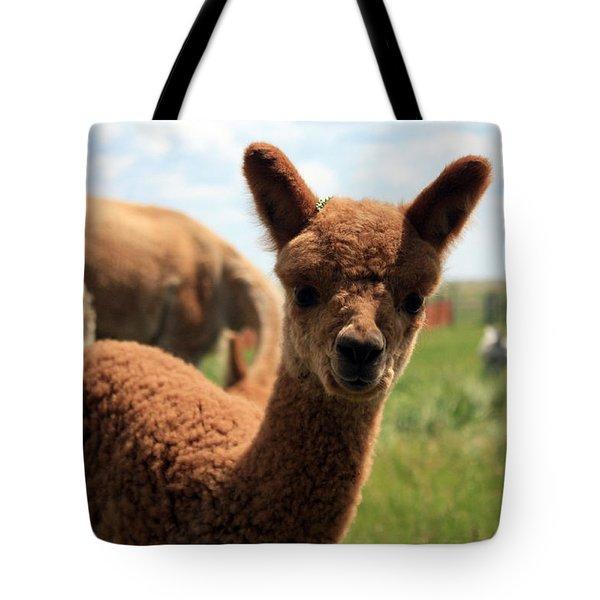 Hello Baby Tote Bag