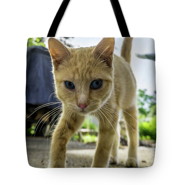Hello Beautiful 136b Tote Bag