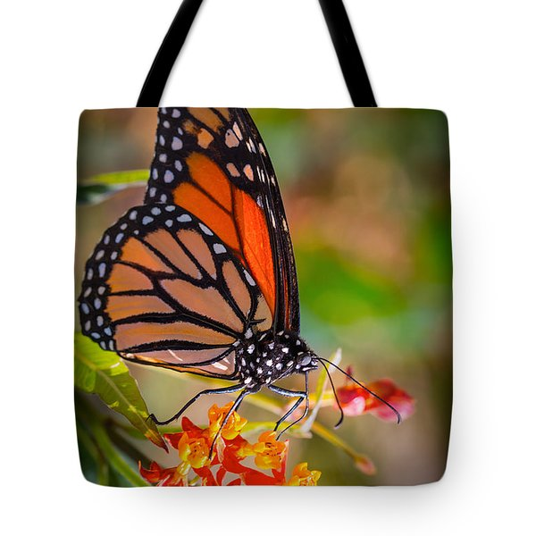 Hello Butterfly Tote Bag