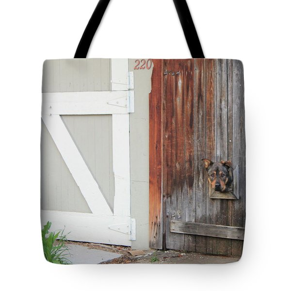 Hello, Comet Tote Bag by Christin Brodie