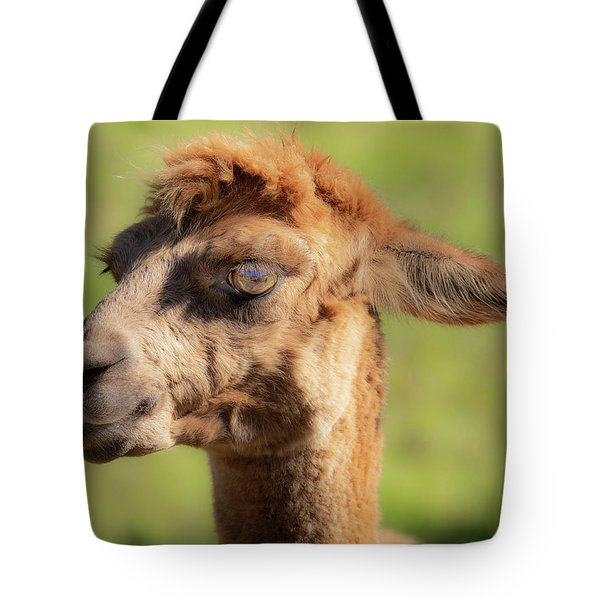Tote Bag featuring the photograph Hello Darling by Jeremy Holton