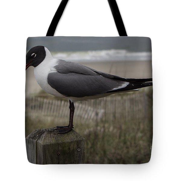 Hello Friend Seagull Tote Bag