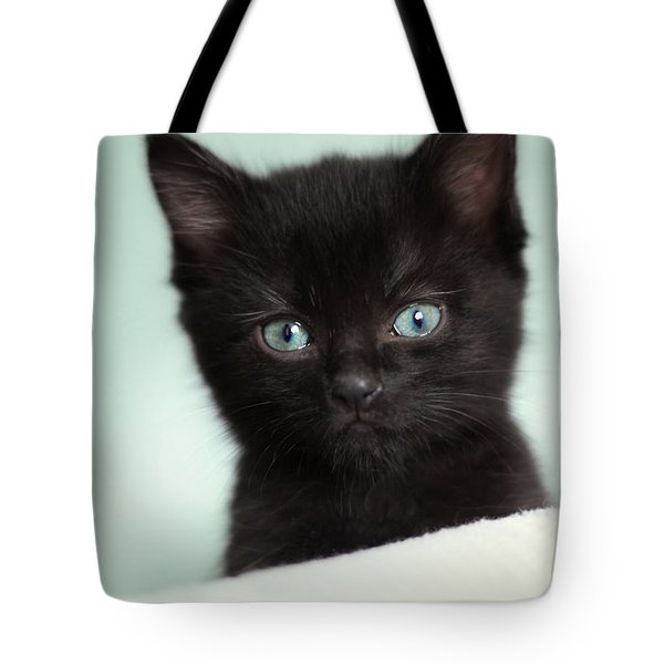 Tote Bag featuring the photograph Hello Kitty by Amy Tyler