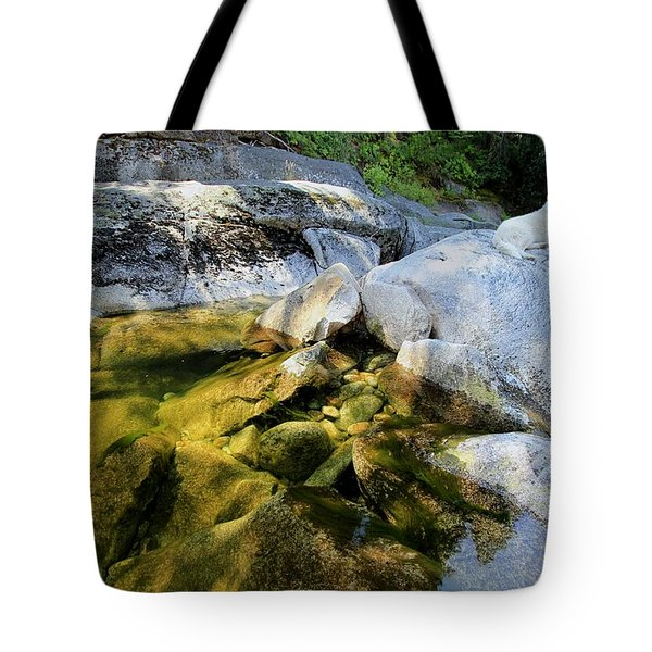 Tote Bag featuring the photograph Hello by Sean Sarsfield