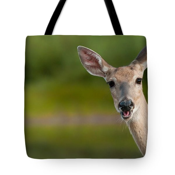 Hello Tote Bag by Sebastian Musial