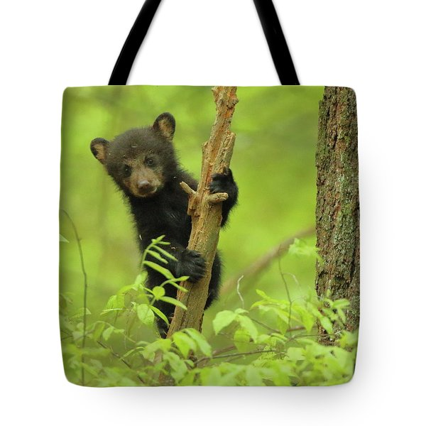 Tote Bag featuring the photograph Hello There by Coby Cooper