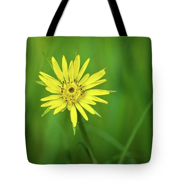 Tote Bag featuring the photograph Hello Wild Yellow by Bill Pevlor