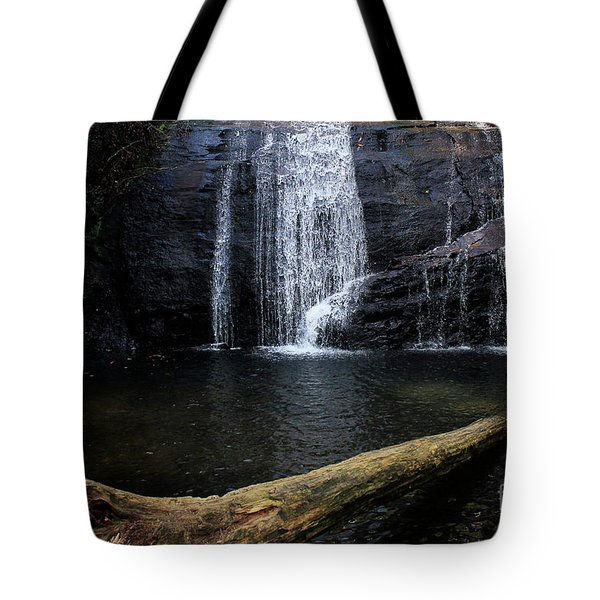 Helton Creek Falls Georgia Tote Bag