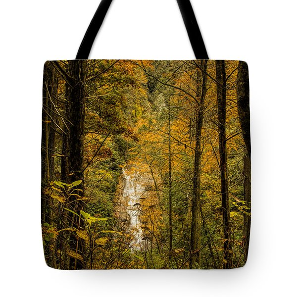 Tote Bag featuring the photograph Helton Falls Through The Leaves by Barbara Bowen