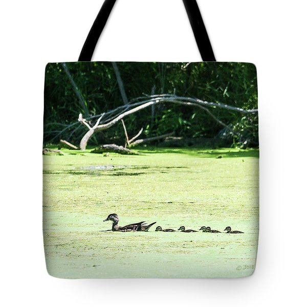 Hen And Baby Wood Ducks Tote Bag
