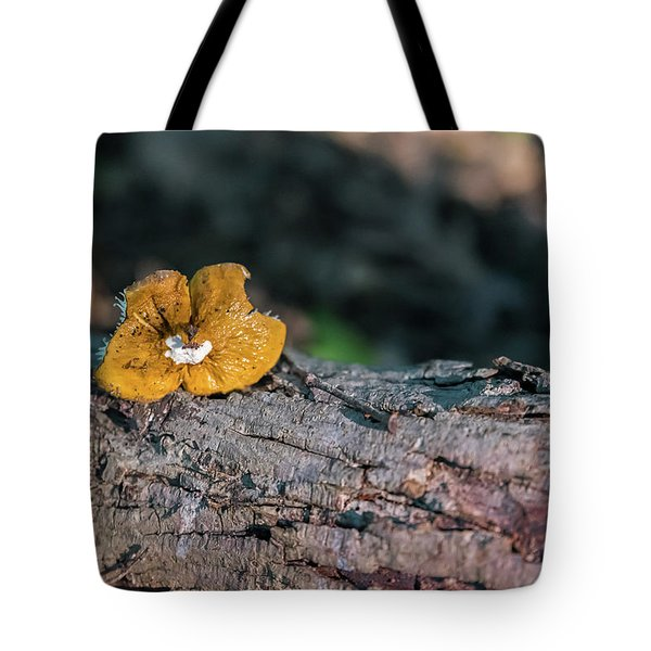 Hen Of The Woods Mushroom Tote Bag