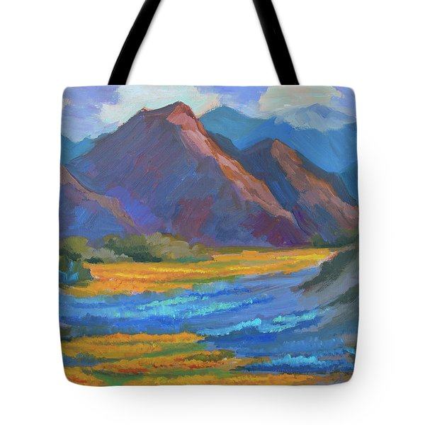 Tote Bag featuring the painting Henderson Canyon Borrego Springs by Diane McClary