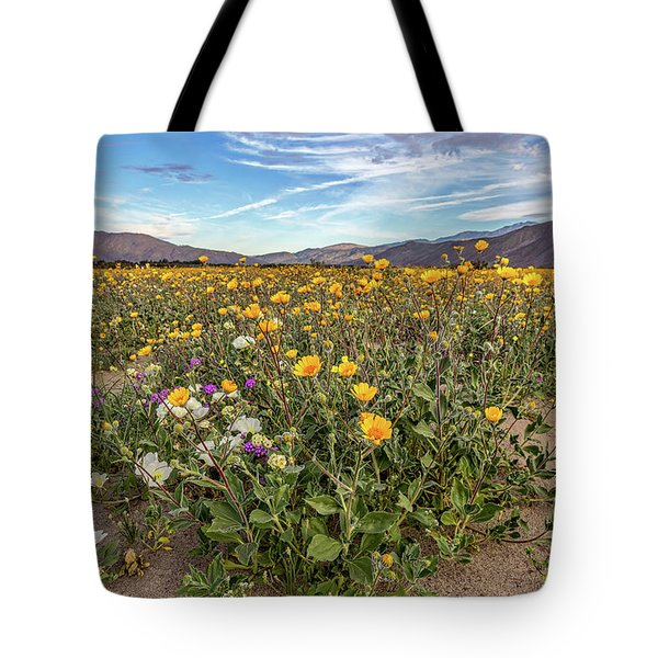 Tote Bag featuring the photograph Henderson Canyon Super Bloom by Peter Tellone