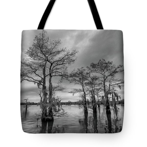 Henderson Swamp Wetplate Tote Bag