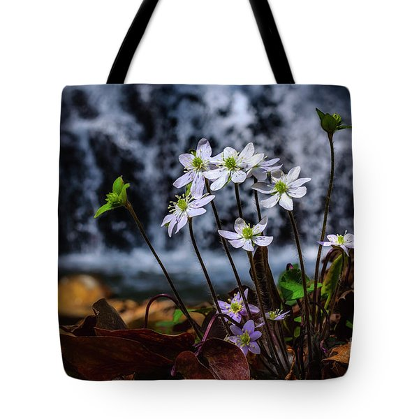 Tote Bag featuring the photograph Hepatica And Waterfall by Thomas R Fletcher