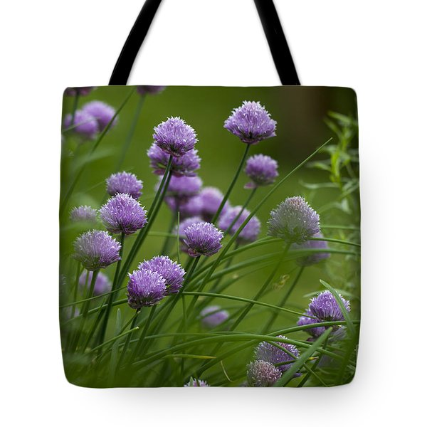 Herb Garden. Tote Bag by Clare Bambers
