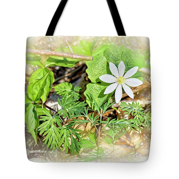 Herbal Bloodroot Wildflower Tote Bag