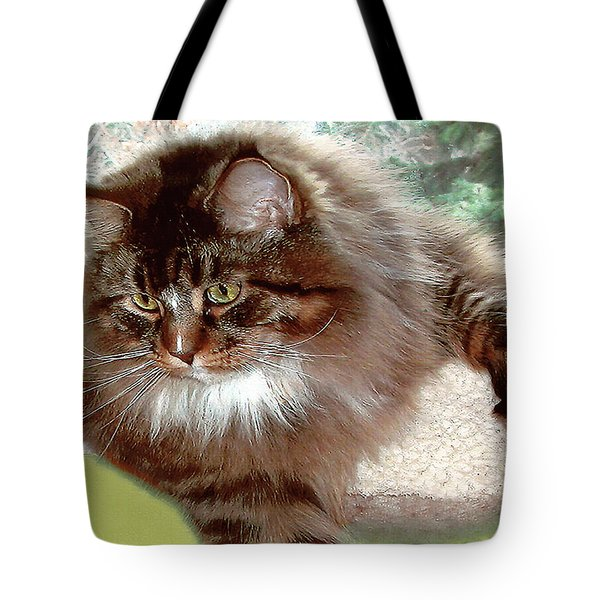 Tote Bag featuring the photograph Hercules The Beautiful. by Roger Bester