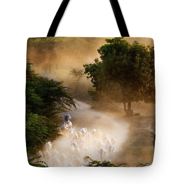 herd and farmer going home in the evening, Bagan Myanmar Tote Bag