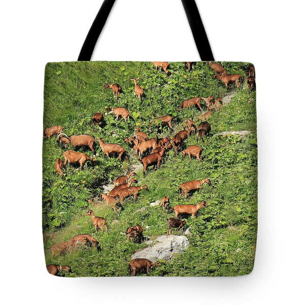 Herd Of Goats Tote Bag