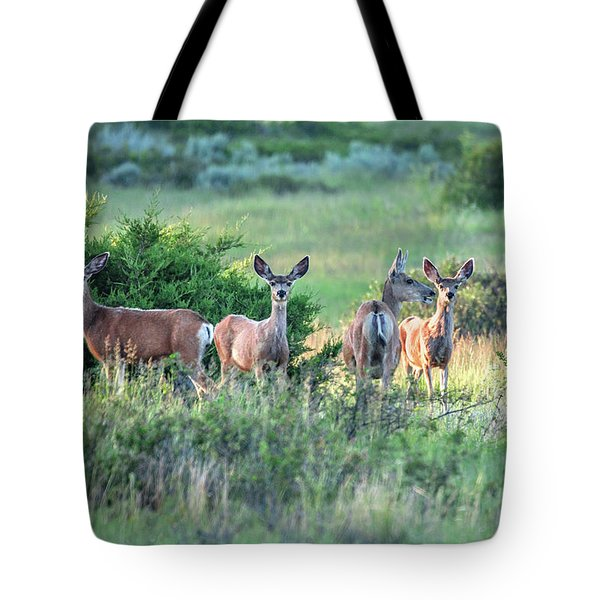 Herd Of Muleys Tote Bag