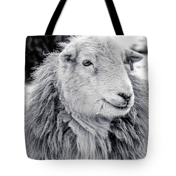 Herdwick Sheep Tote Bag