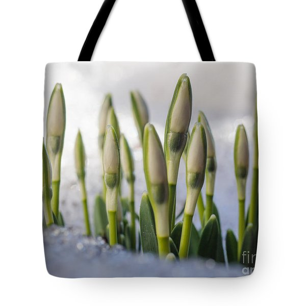 Here Comes The Spring Tote Bag