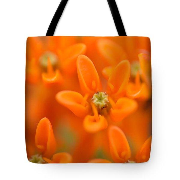 Here Tote Bag by Janet Rockburn