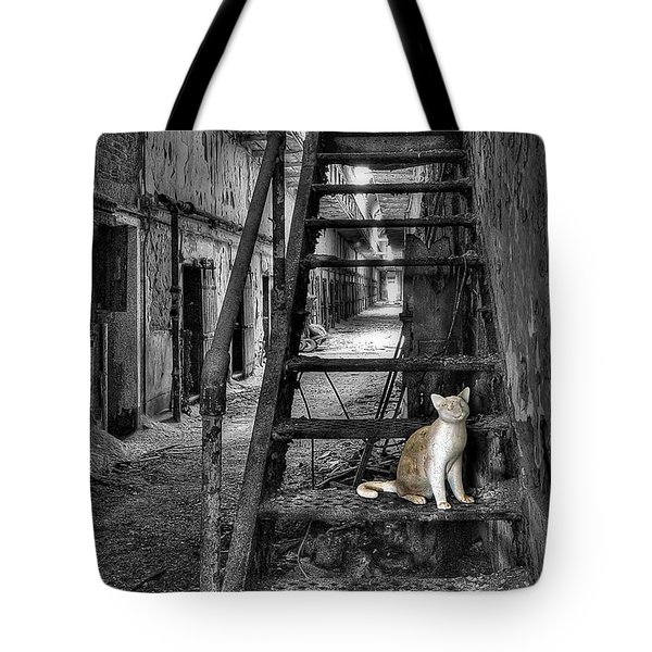 Here Kitty Kitty Kitty... Tote Bag