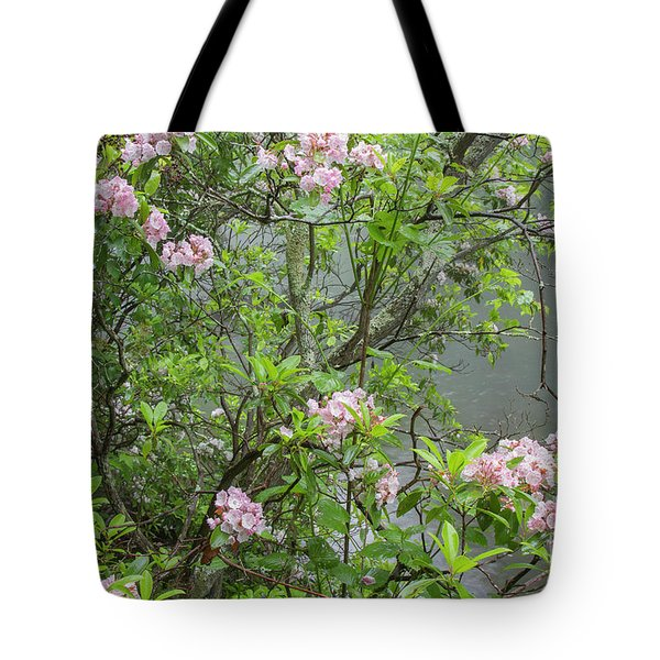 Tote Bag featuring the photograph Hereford Wildlands 2 by Chris Scroggins