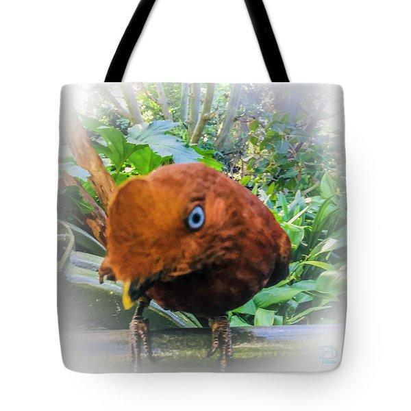 Here's Lookin Atcha Tote Bag