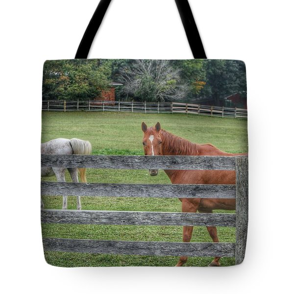 1007 - Here's Looking At You Tote Bag