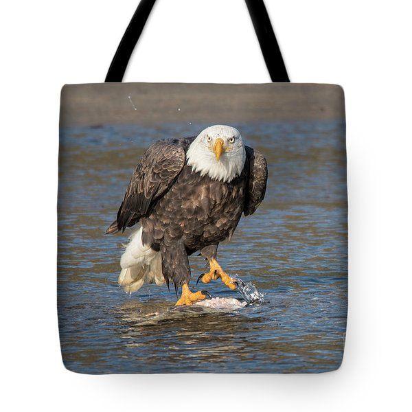 Here's Staring At You Tote Bag
