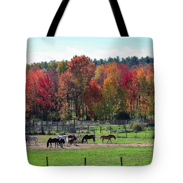 Heritage Farm In Easthampton, Ma Tote Bag