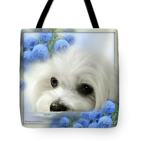 Hermes In Blue Tote Bag