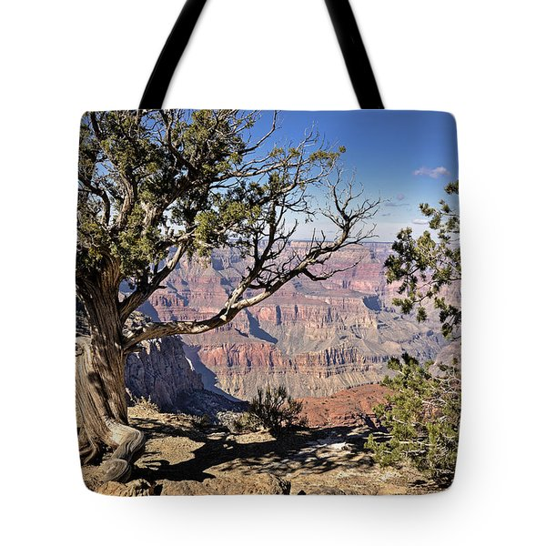 Tote Bag featuring the photograph Hermits by John Gilbert