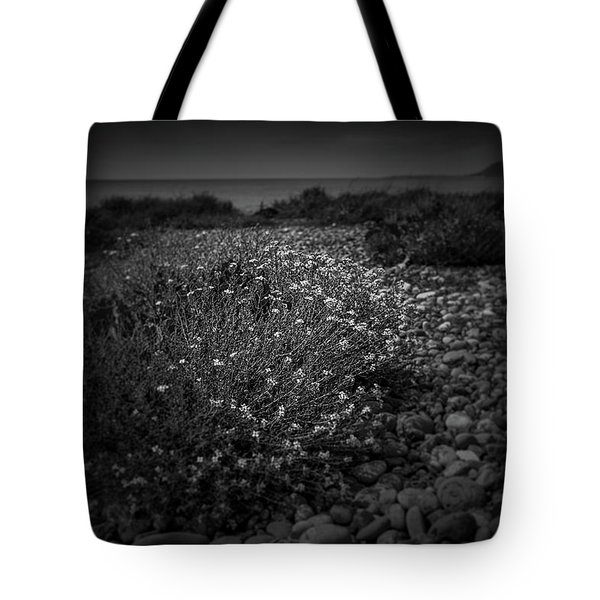 Hernsea Bay And Black Combe Tote Bag