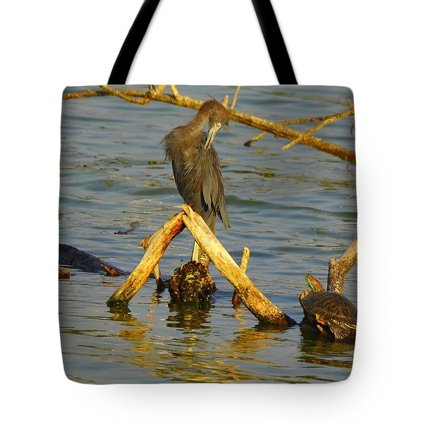 Heron And Turtle Tote Bag by Robert Frederick