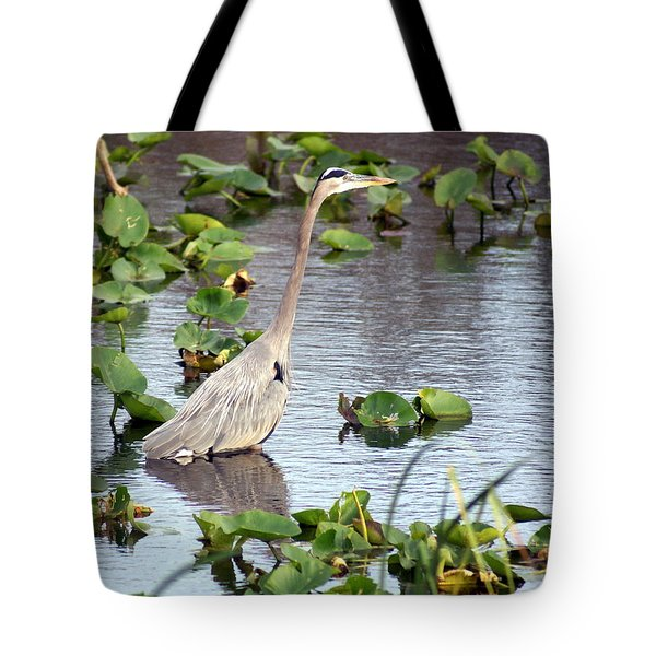 Heron Fishing In The Everglades Tote Bag by Marty Koch