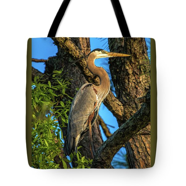 Heron In The Pine Tree Tote Bag