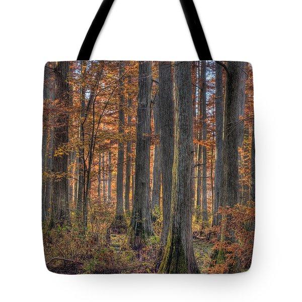 Heron Pond Dawn Tote Bag by Steve Gadomski