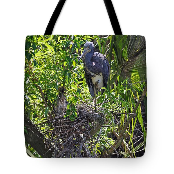 Heron With Chick In Nest Tote Bag by Kenneth Albin